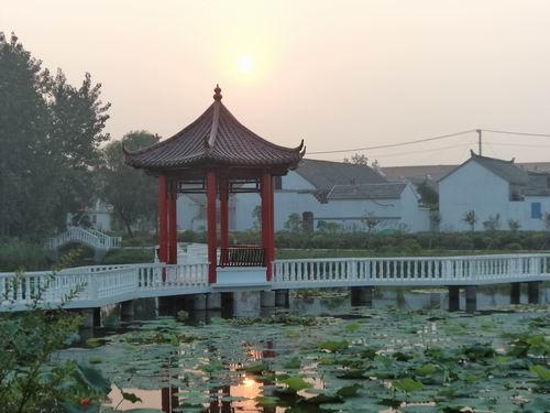 射阳湖镇姜庄村
